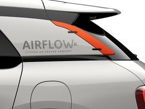 C4-Cactus-airflow-12