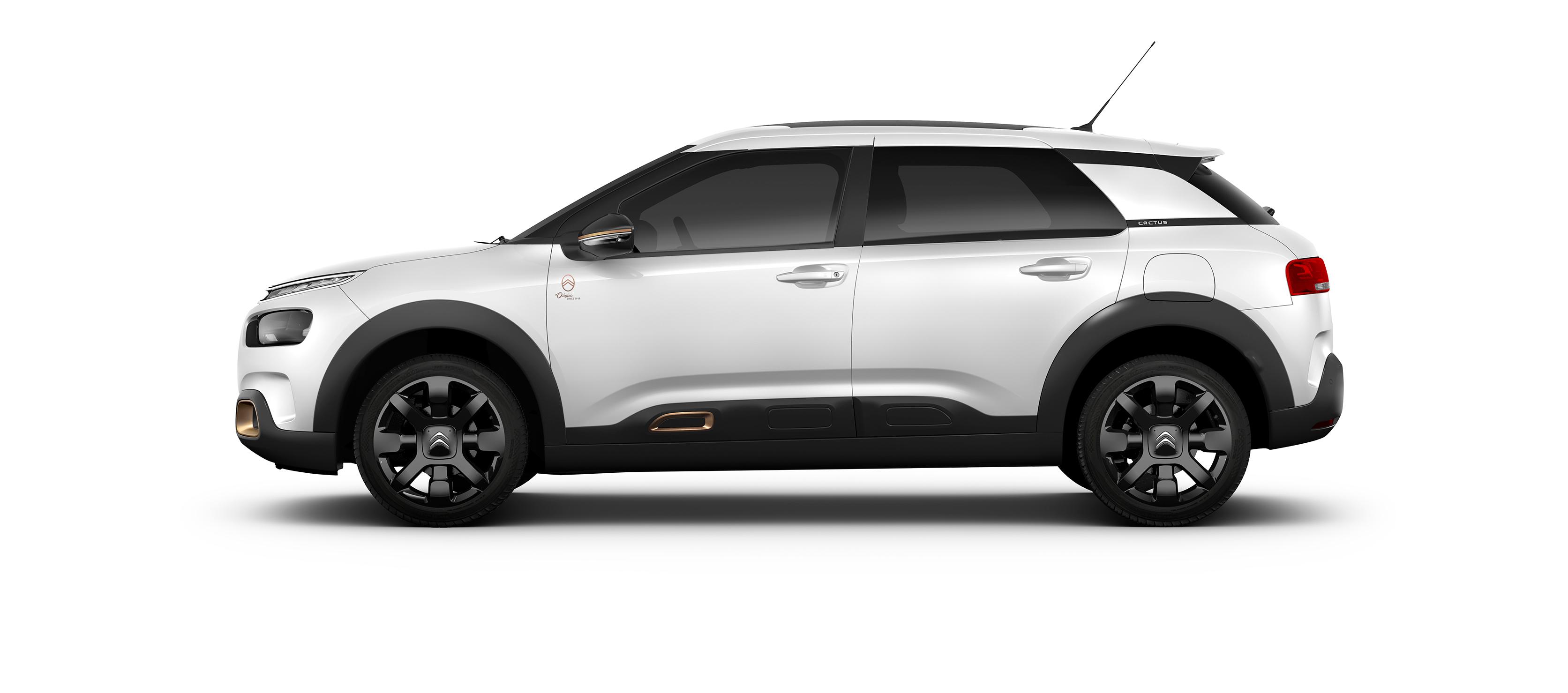 Citroën celebra 100 años presentando el C4 Cactus origins